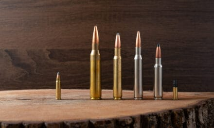 Can Rifles Shoot Different Calibers of Bullets?