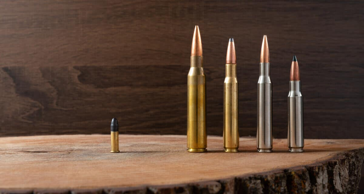 Chart of all Rifle Calibers In Order, And Their Power