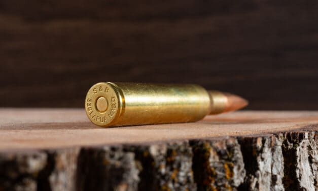 Comparing the 6.5 Creedmoor to 5 Similar Cartridges