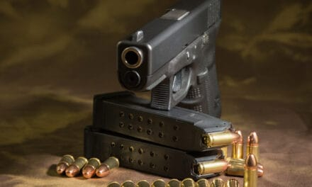 9mm for Bear Protection: Best ammo, tips, and if it's enough