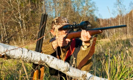 Rifle Recoil Table: Updated for 2021 with all popular cartridges