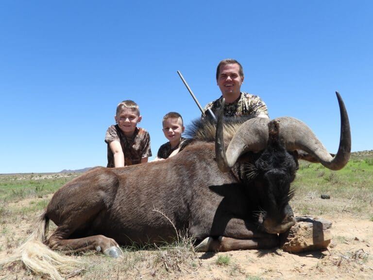 Hunting Africa: How much it costs, how to find deals